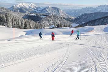 Skigebiet Steinplatte Skigebiet In österreich