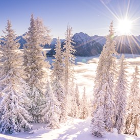Skiregion: Winterlandschaft - Skiregion Schladming-Dachstein